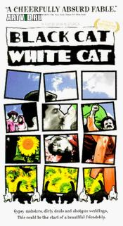 Черная кошка, белый кот